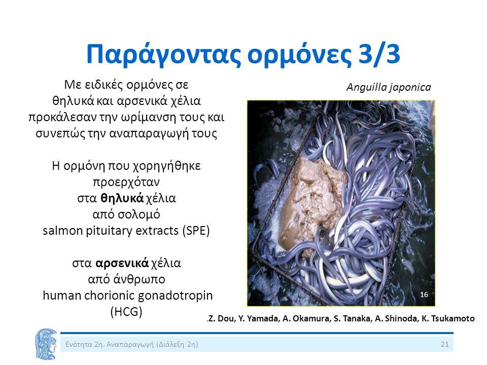 Παράγοντας ορμόνες 3/3 Με ειδικές ορμόνες σε θηλυκά και αρσενικά χέλια προκάλεσαν την ωρίμανση τους και συνεπώς την αναπαραγωγή τους Η ορμόνη που χορη