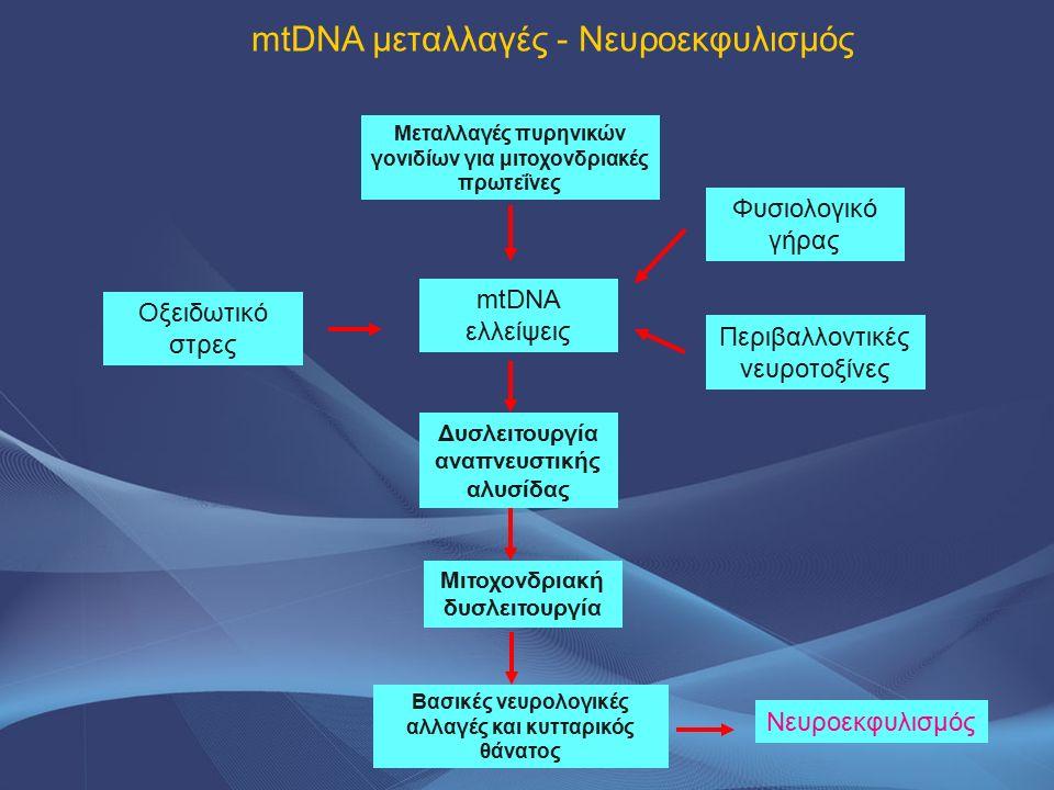 mtDNA μεταλλαγές - Νευροεκφυλισμός Οξειδωτικό στρες Φυσιολογικό γήρας mtDNA ελλείψεις Μεταλλαγές πυρηνικών γονιδίων για μιτοχονδριακές πρωτεΐνες Δυσλε
