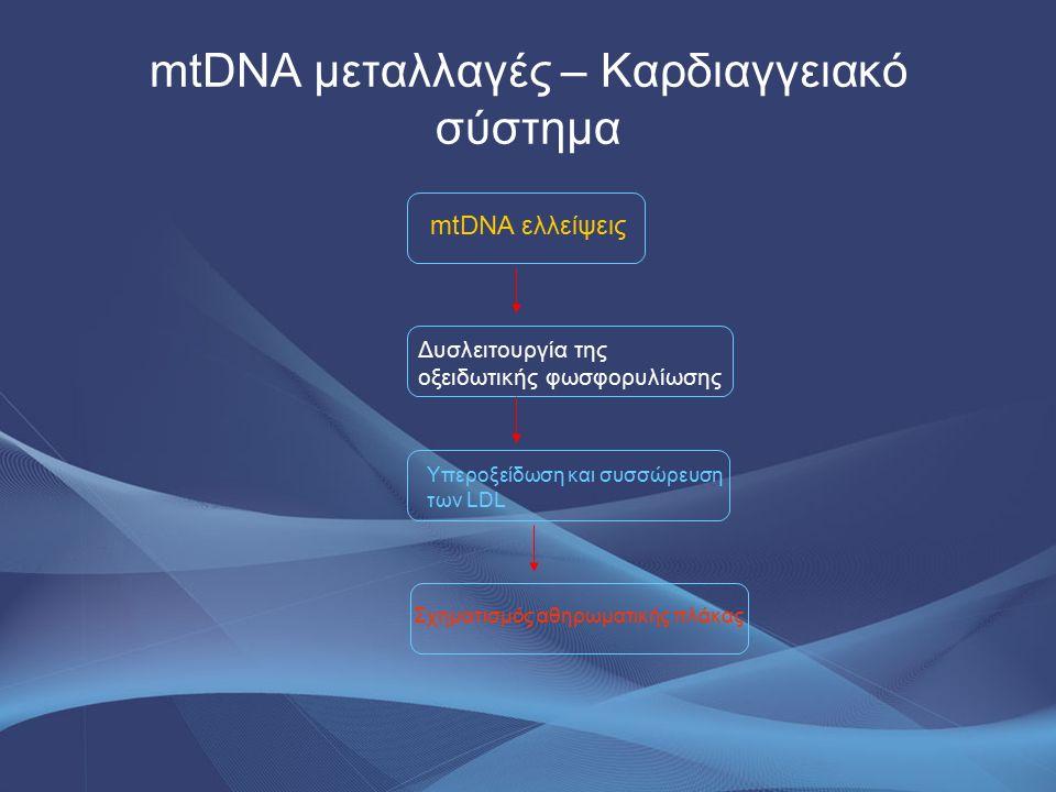 mtDNA μεταλλαγές – Καρδιαγγειακό σύστημα mtDNA ελλείψεις Δυσλειτουργία της οξειδωτικής φωσφορυλίωσης Υπεροξείδωση και συσσώρευση των LDL Σχηματισμός α