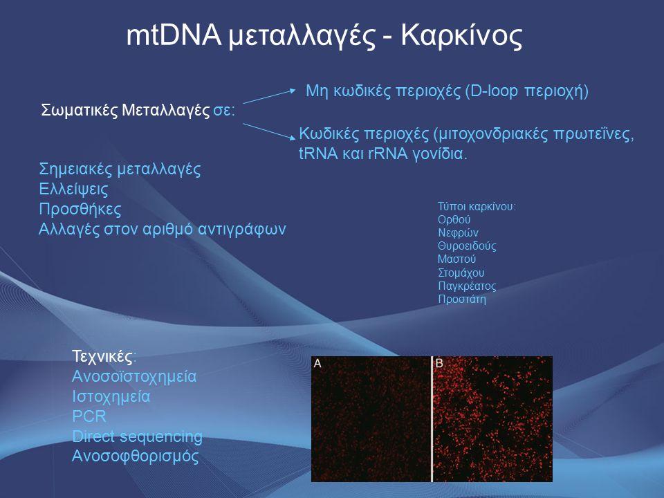 mtDNA μεταλλαγές - Καρκίνος Σωματικές Μεταλλαγές σε: Μη κωδικές περιοχές (D-loop περιοχή) Κωδικές περιοχές (μιτοχονδριακές πρωτεΐνες, tRNA και rRNA γο