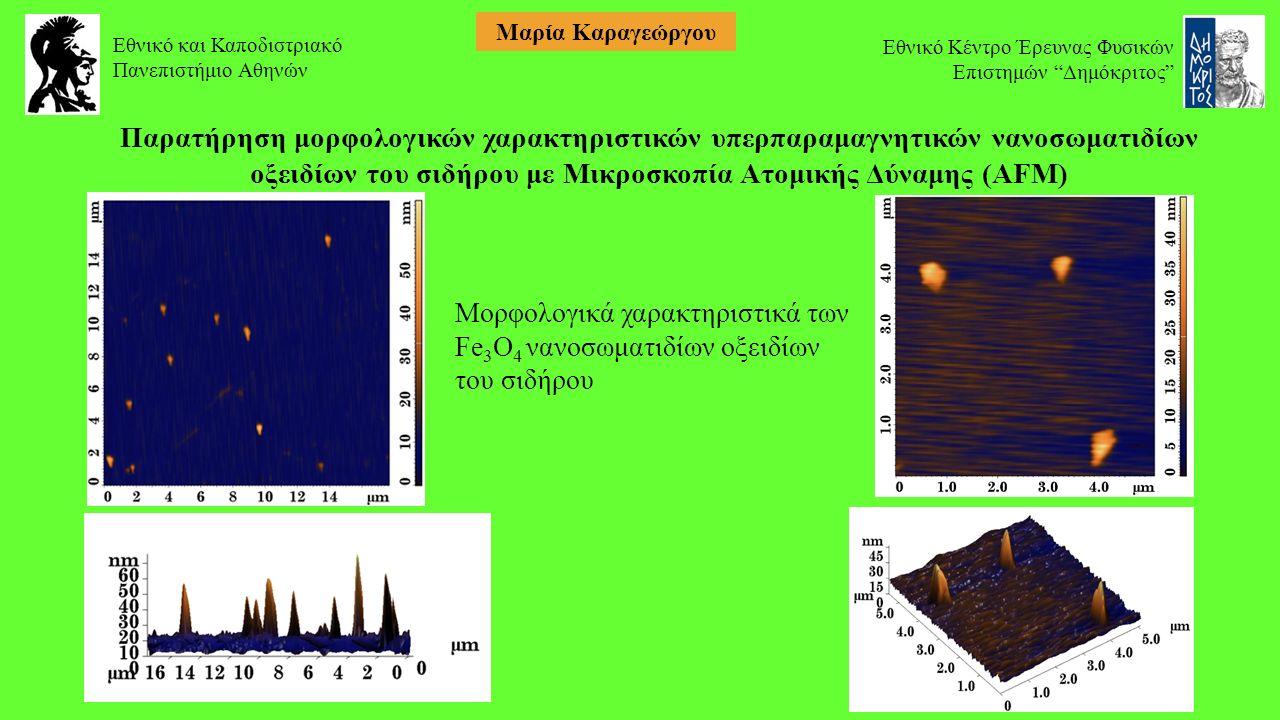 Παρατήρηση μορφολογικών χαρακτηριστικών υπερπαραμαγνητικών νανοσωματιδίων οξειδίων του σιδήρου με Μικροσκοπία Ατομικής Δύναμης (AFM) Μορφολογικά χαρακτηριστικά των Fe 3 O 4 νανοσωματιδίων οξειδίων του σιδήρου Εθνικό και Καποδιστριακό Πανεπιστήμιο Αθηνών Εθνικό Κέντρο Έρευνας Φυσικών Επιστημών Δημόκριτος Μαρία Καραγεώργου