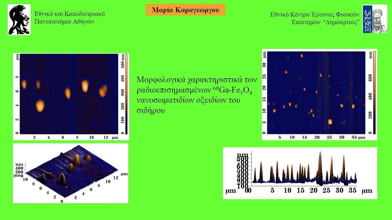 Μορφολογικά χαρακτηριστικά των ραδιοεπισημασμένων 68 Ga-Fe 3 O 4 νανοσωματιδίων οξειδίων του σιδήρου Εθνικό και Καποδιστριακό Πανεπιστήμιο Αθηνών Εθνικό Κέντρο Έρευνας Φυσικών Επιστημών Δημόκριτος Μαρία Καραγεώργου