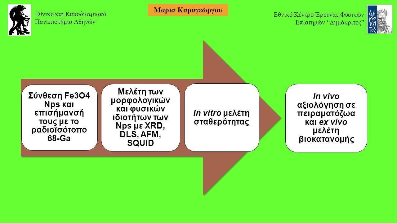 Σύνθεση Fe3O4 Nps και επισήμανσή τους με το ραδιοϊσότοπο 68-Ga Μελέτη των μορφολογικών και φυσικών ιδιοτήτων των Νps με XRD, DLS, AFM, SQUID In vitro μελέτη σταθερότητας In vivo αξιολόγηση σε πειραματόζωα και ex vivo μελέτη βιοκατανομής Εθνικό και Καποδιστριακό Πανεπιστήμιο Αθηνών Εθνικό Κέντρο Έρευνας Φυσικών Επιστημών Δημόκριτος Μαρία Καραγεώργου