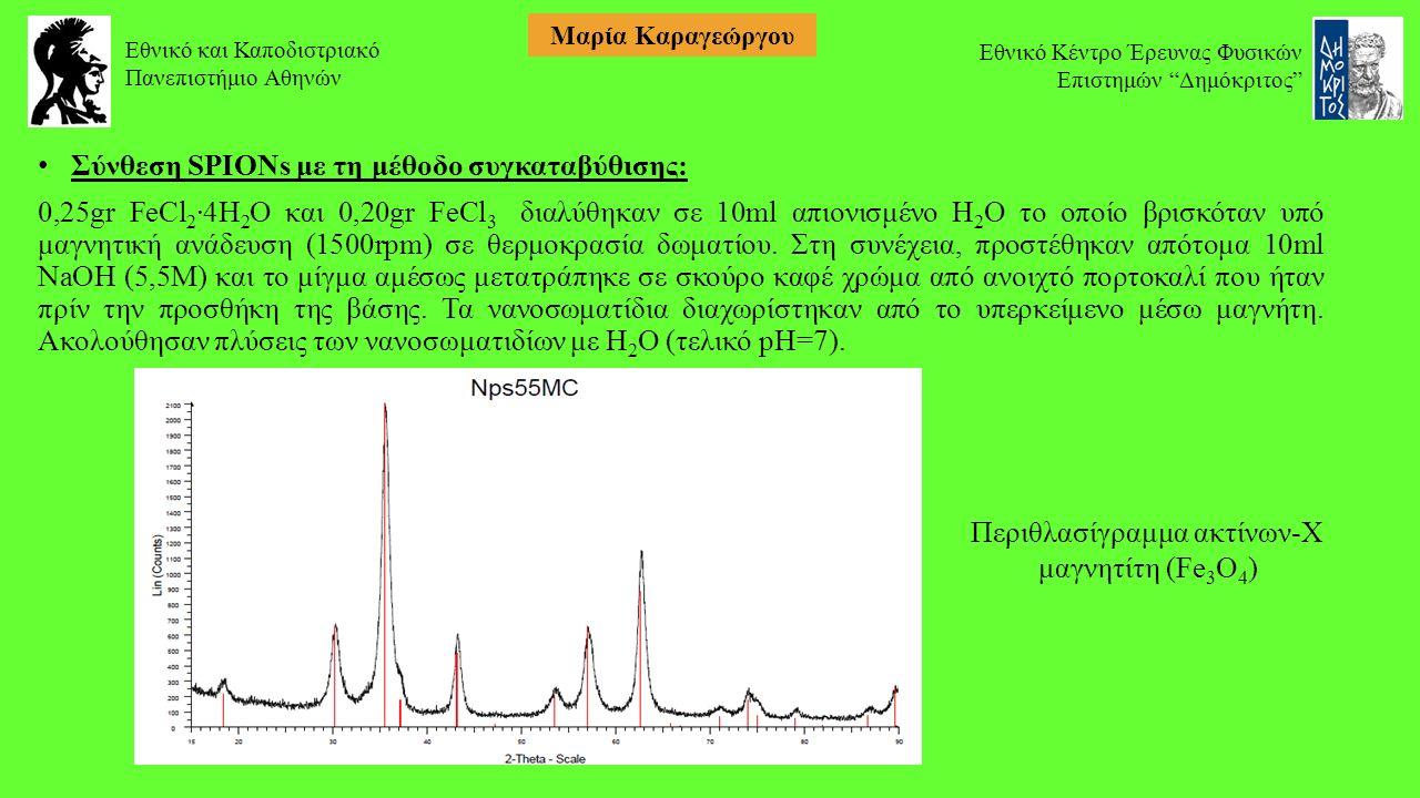 Σύνθεση SPIONs με τη μέθοδο συγκαταβύθισης: 0,25gr FeCl 2 ·4H 2 O και 0,20gr FeCl 3 διαλύθηκαν σε 10ml απιονισμένο H 2 O το οποίο βρισκόταν υπό μαγνητική ανάδευση (1500rpm) σε θερμοκρασία δωματίου.