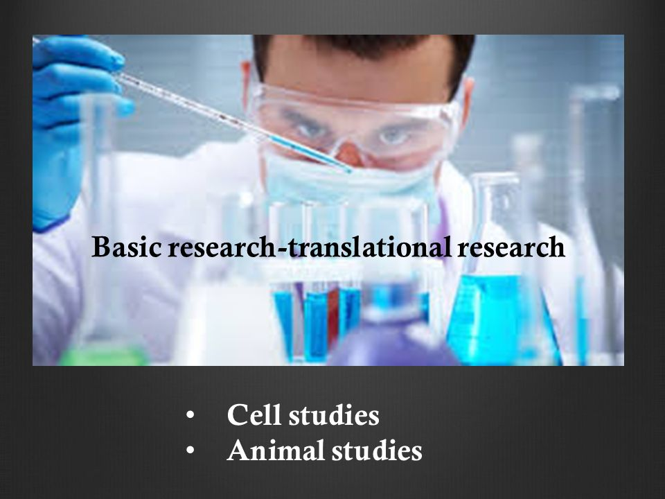 Cell studies Animal studies Basic research-translational research