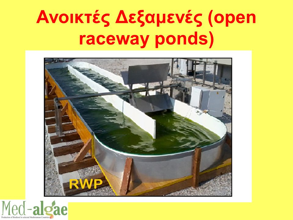 Ανοικτές Δεξαμενές (open raceway ponds)