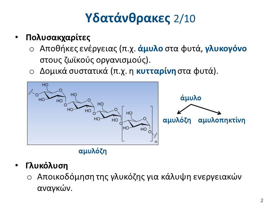 Υδατάνθρακες 2/10 Πολυσακχαρίτες o Αποθήκες ενέργειας (π.χ. άμυλο στα φυτά, γλυκογόνο στους ζωϊκούς οργανισμούς). o Δομικά συστατικά (π.χ. η κυτταρίνη