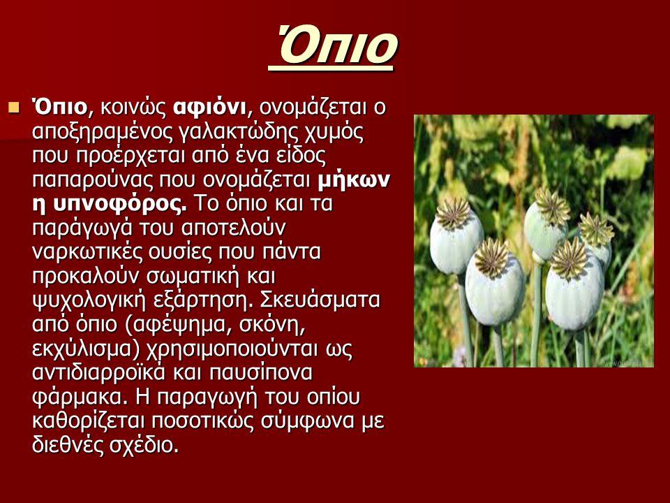 Όπιο Όπιο, κοινώς αφιόνι, ονομάζεται ο αποξηραμένος γαλακτώδης χυμός που προέρχεται από ένα είδος παπαρούνας που ονομάζεται μήκων η υπνοφόρος.