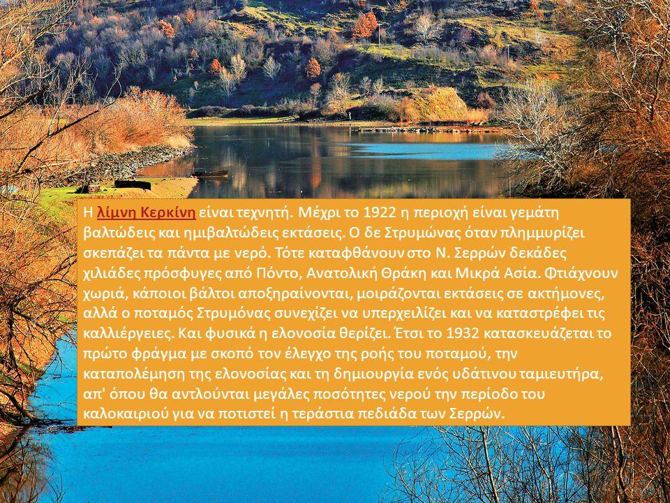 Η λίμνη Κερκίνη είναι τεχνητή. Μέχρι το 1922 η περιοχή είναι γεμάτη βαλτώδεις και ημιβαλτώδεις εκτάσεις. Ο δε Στρυμώνας όταν πλημμυρίζει σκεπάζει τα π