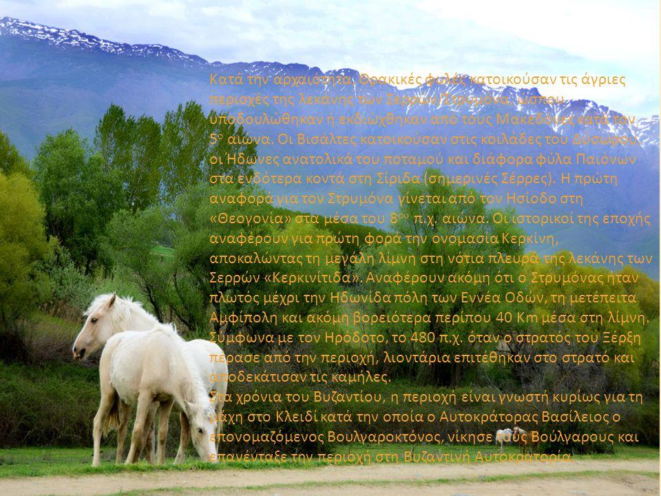 Κατά την αρχαιότητα, Θρακικές φυλές κατοικούσαν τις άγριες περιοχές της λεκάνης των Σερρών/Στρυμόνα, ώσπου υποδουλώθηκαν ή εκδιώχθηκαν από τους Μακεδό