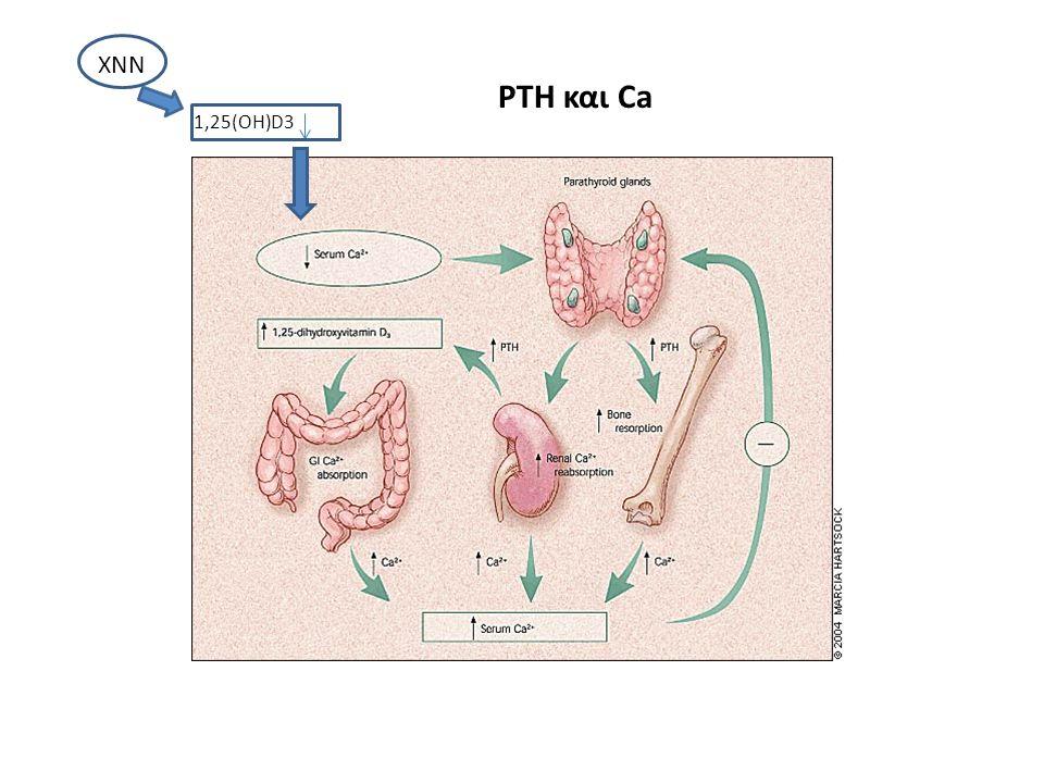 PTH και Ca 1,25(OH)D3 ΧΝΝ