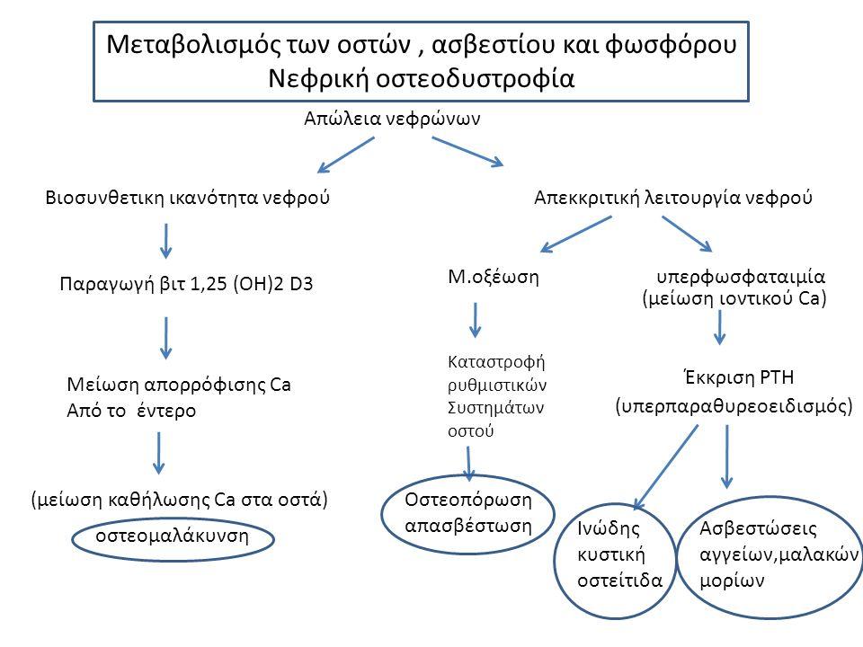 Μεταβολισμός των οστών, ασβεστίου και φωσφόρου Νεφρική οστεοδυστροφία Απώλεια νεφρώνων Βιοσυνθετικη ικανότητα νεφρούΑπεκκριτική λειτουργία νεφρού Παραγωγή βιτ 1,25 (ΟΗ)2 D3 Mείωση απορρόφισης Ca Από το έντερο υπερφωσφαταιμίαΜ.οξέωση Έκκριση PTH Καταστροφή ρυθμιστικών Συστημάτων οστού Οστεοπόρωση απασβέστωση Ινώδης κυστική οστείτιδα Ασβεστώσεις αγγείων,μαλακών μορίων οστεομαλάκυνση (μείωση καθήλωσης Ca στα οστά) (υπερπαραθυρεοειδισμός) (μείωση ιοντικού Ca)