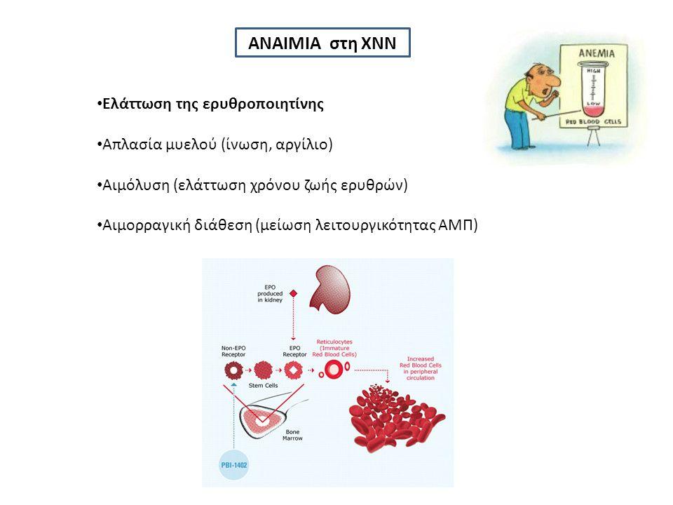 ΑΝΑΙΜΙΑ στη ΧΝΝ Ελάττωση της ερυθροποιητίνης Απλασία μυελού (ίνωση, αργίλιο) Αιμόλυση (ελάττωση χρόνου ζωής ερυθρών) Αιμορραγική διάθεση (μείωση λειτουργικότητας ΑΜΠ)