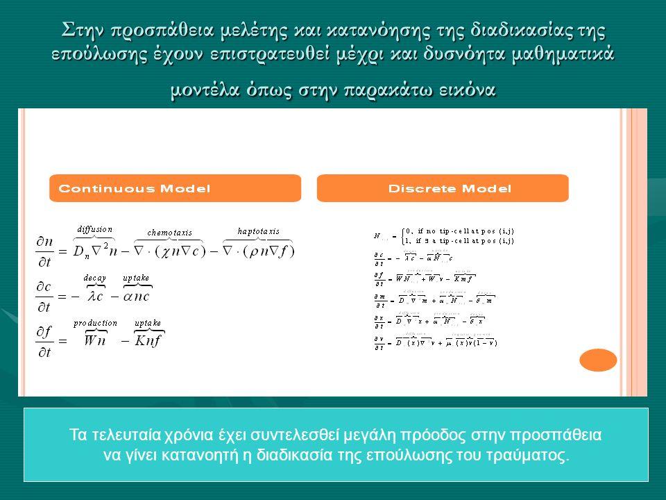 Στην προσπάθεια μελέτης και κατανόησης της διαδικασίας της επούλωσης έχουν επιστρατευθεί μέχρι και δυσνόητα μαθηματικά μοντέλα όπως στην παρακάτω εικόνα Τα τελευταία χρόνια έχει συντελεσθεί μεγάλη πρόοδος στην προσπάθεια να γίνει κατανοητή η διαδικασία της επούλωσης του τραύματος.