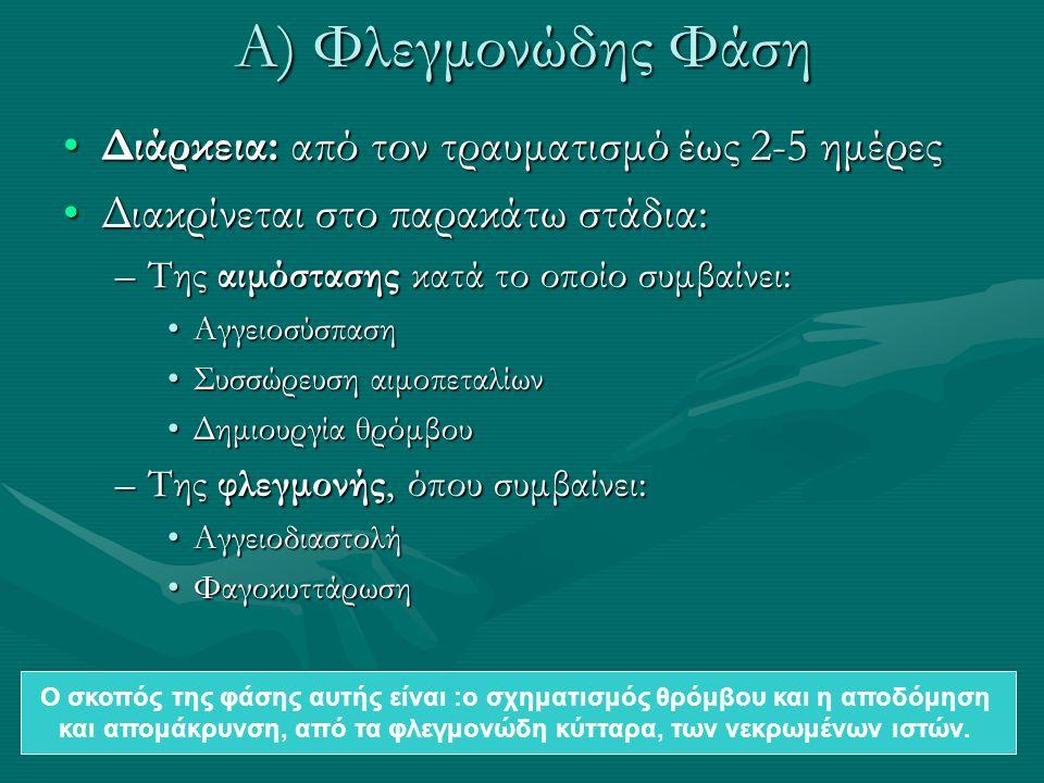 Α) Φλεγμονώδης Φάση Διάρκεια: από τον τραυματισμό έως 2-5 ημέρεςΔιάρκεια: από τον τραυματισμό έως 2-5 ημέρες Διακρίνεται στο παρακάτω στάδια:Διακρίνεται στο παρακάτω στάδια: –Της αιμόστασης κατά το οποίο συμβαίνει: ΑγγειοσύσπασηΑγγειοσύσπαση Συσσώρευση αιμοπεταλίωνΣυσσώρευση αιμοπεταλίων Δημιουργία θρόμβουΔημιουργία θρόμβου –Της φλεγμονής, όπου συμβαίνει: ΑγγειοδιαστολήΑγγειοδιαστολή ΦαγοκυττάρωσηΦαγοκυττάρωση Ο σκοπός της φάσης αυτής είναι :ο σχηματισμός θρόμβου και η αποδόμηση και απομάκρυνση, από τα φλεγμονώδη κύτταρα, των νεκρωμένων ιστών.