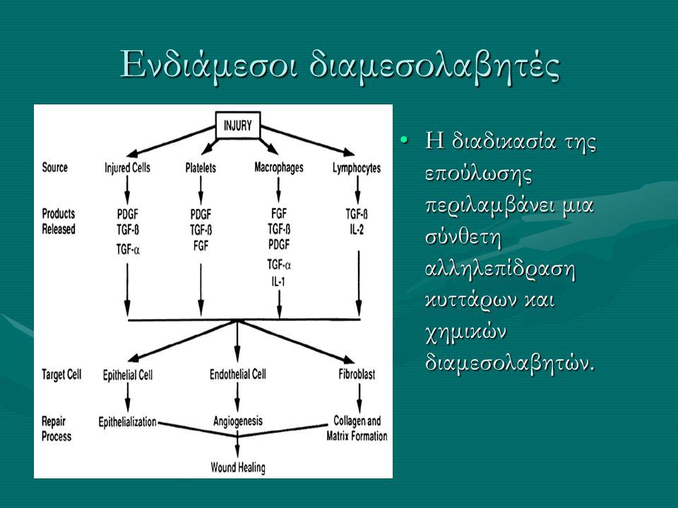 Ενδιάμεσοι διαμεσολαβητές Η διαδικασία της επούλωσης περιλαμβάνει μια σύνθετη αλληλεπίδραση κυττάρων και χημικών διαμεσολαβητών.