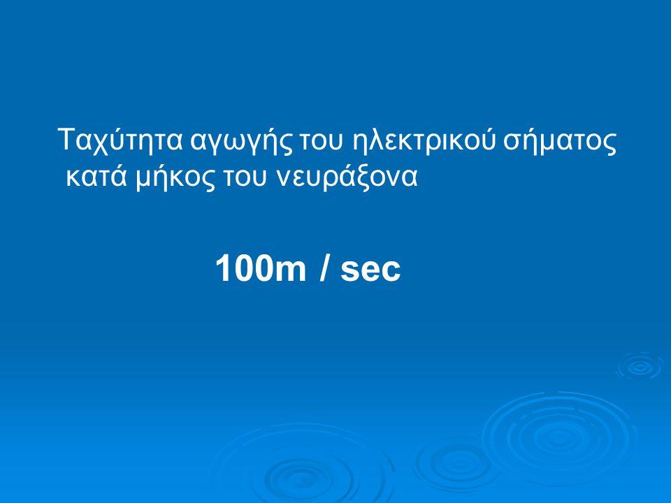 Ταχύτητα αγωγής του ηλεκτρικού σήματος κατά μήκος του νευράξονα 100m / sec