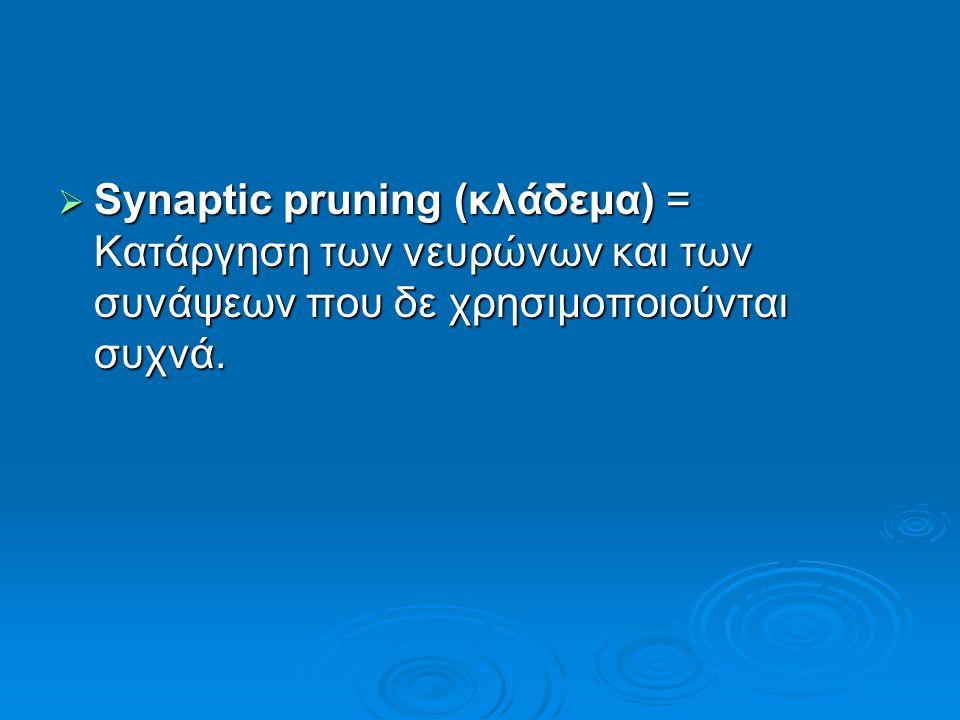  Synaptic pruning (κλάδεμα) = Κατάργηση των νευρώνων και των συνάψεων που δε χρησιμοποιούνται συχνά.