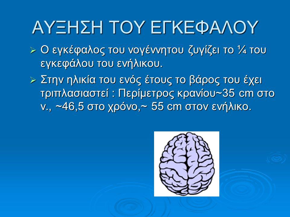 ΑΥΞΗΣΗ ΤΟΥ ΕΓΚΕΦΑΛΟΥ  Ο εγκέφαλος του νογέννητου ζυγίζει το ¼ του εγκεφάλου του ενήλικου.