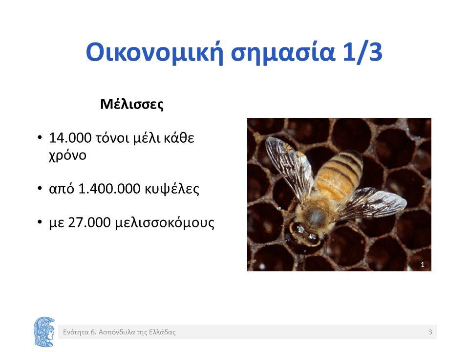 Οικονομική σημασία 1/3 Μέλισσες 14.000 τόνοι μέλι κάθε χρόνο από 1.400.000 κυψέλες με 27.000 μελισσοκόμους Ενότητα 6.