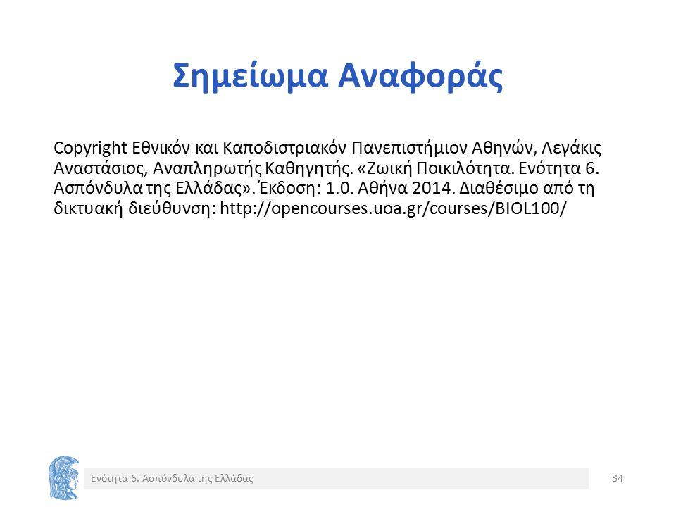 Σημείωμα Αναφοράς Copyright Εθνικόν και Καποδιστριακόν Πανεπιστήμιον Αθηνών, Λεγάκις Αναστάσιος, Αναπληρωτής Καθηγητής.