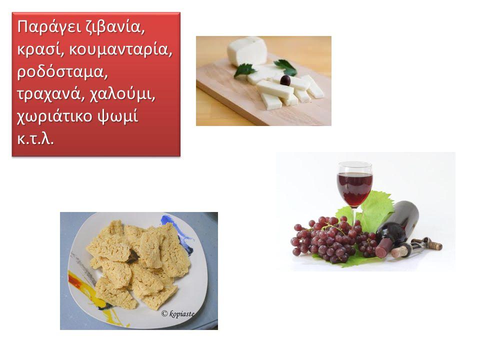 Παράγει ζιβανία, κρασί, κουμανταρία, ροδόσταμα, τραχανά, χαλούμι, χωριάτικο ψωμί κ.τ.λ.