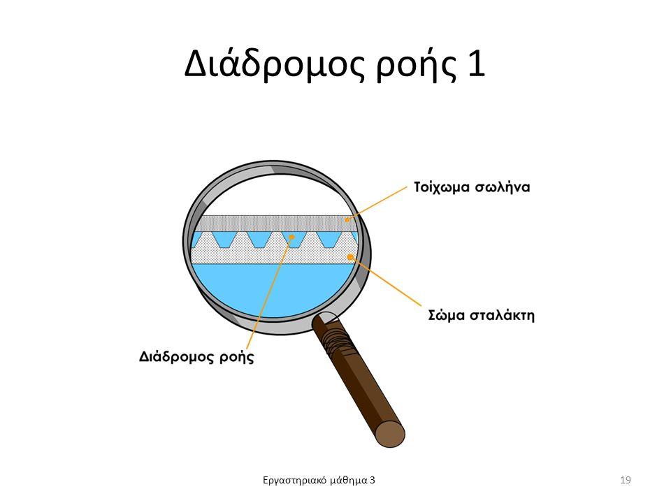 Εργαστηριακό μάθημα 3 Διάδρομος ροής 1 19