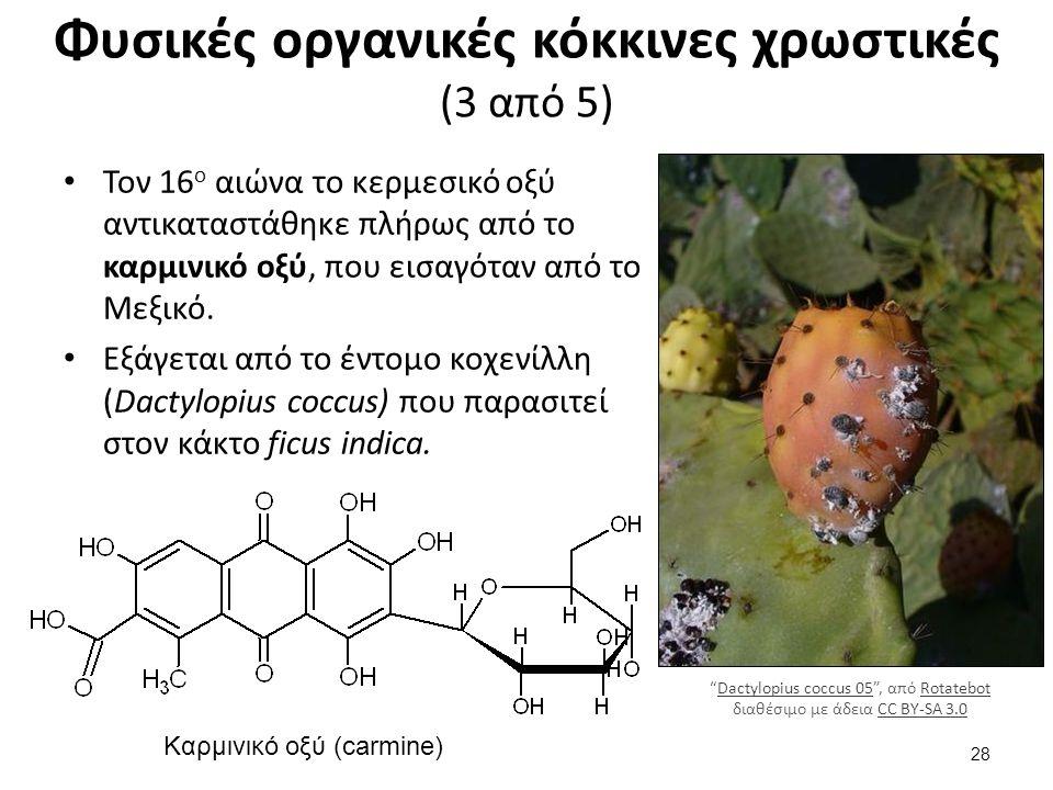 Φυσικές οργανικές κόκκινες χρωστικές (3 από 5) Τον 16 ο αιώνα το κερμεσικό οξύ αντικαταστάθηκε πλήρως από το καρμινικό οξύ, που εισαγόταν από το Μεξικό.