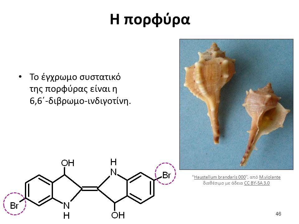 Η πορφύρα Το έγχρωμο συστατικό της πορφύρας είναι η 6,6΄-διβρωμο-ινδιγοτίνη.