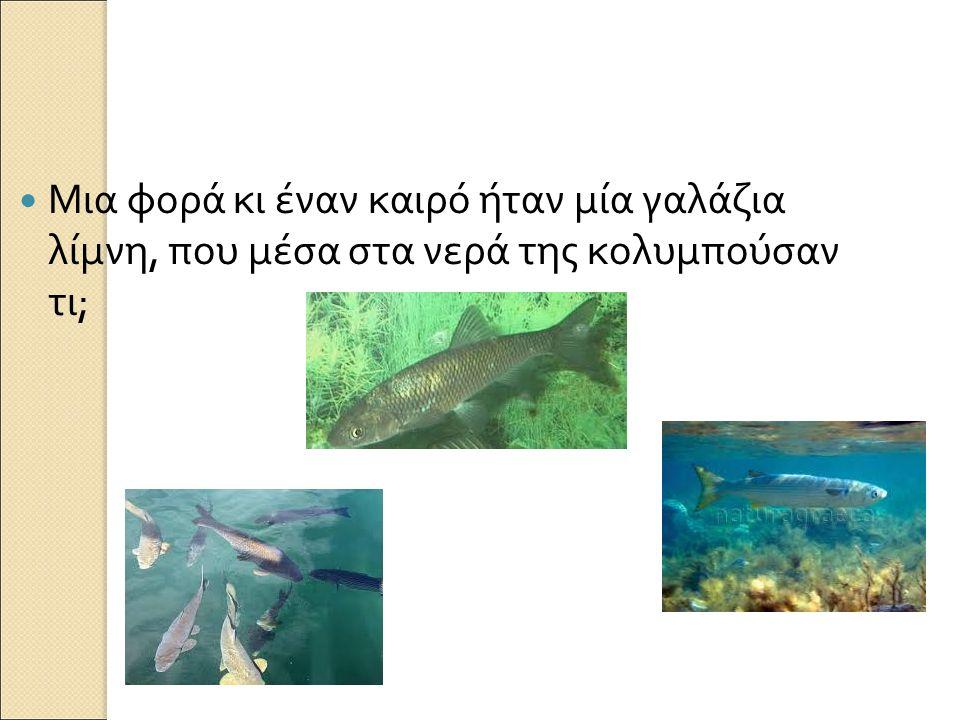 Μια φορά κι έναν καιρό ήταν μία γαλάζια λίμνη, που μέσα στα νερά της κολυμπούσαν τι ;