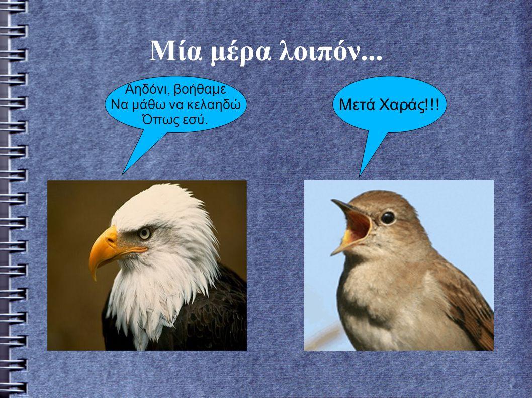 Και έτσι το αηδόνι άρχισε να δέιχνει στον αετό πως πρέπει να τραγουδα.Ο αετός όμως, όσο και να προσπαθούσε, δεν μπορούσε να τραγουδίσει.