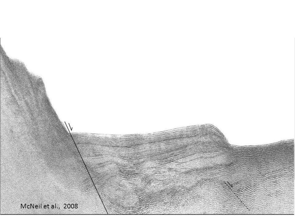 14 McNeil et al., 2008
