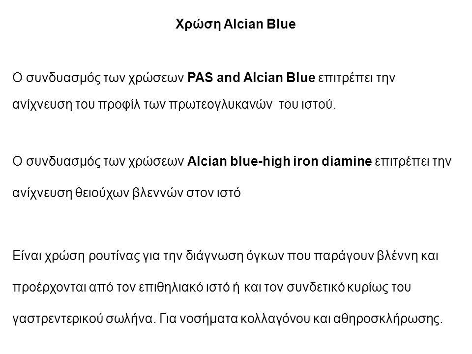 Χρώση Alcian Blue Ο συνδυασμός των χρώσεων PAS and Alcian Blue επιτρέπει την ανίχνευση του προφίλ των πρωτεογλυκανών του ιστού.