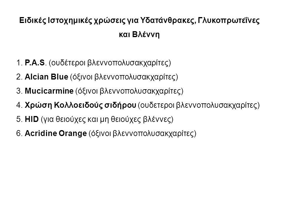 Χρώση Alcian Blue Η χρώση Alcian blue σε pH 2.5 βάφει όξινα βλεννώδη περιεχόμενα ή όξινες βλέννες και μη-θειούχες όξινες βλέννες που παρατηρούνται στα Μεσοθηλιώματα.
