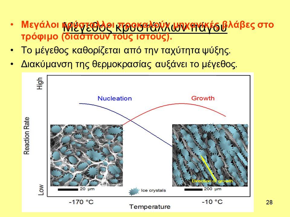 28 Μέγεθος κρυστάλλων πάγου Μεγάλοι κρύσταλλοι προκαλούν μηχανικές βλάβες στο τρόφιμο (διασπούν τους ιστούς). Το μέγεθος καθορίζεται από την ταχύτητα