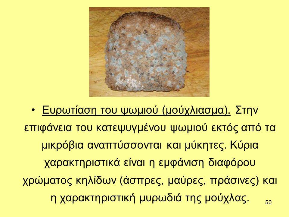 50 Ευρωτίαση του ψωμιού (μούχλιασμα). Στην επιφάνεια του κατεψυγμένου ψωμιού εκτός από τα μικρόβια αναπτύσσονται και μύκητες. Κύρια χαρακτηριστικά είν