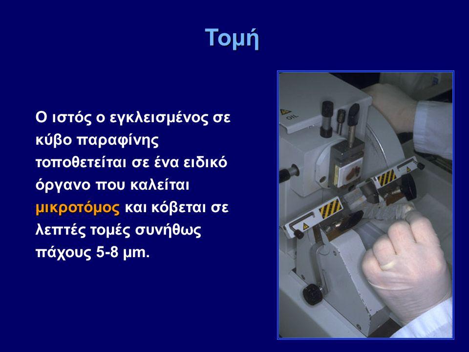 μικροτόμος Ο ιστός ο εγκλεισμένος σε κύβο παραφίνης τοποθετείται σε ένα ειδικό όργανο που καλείται μικροτόμος και κόβεται σε λεπτές τομές συνήθως πάχο