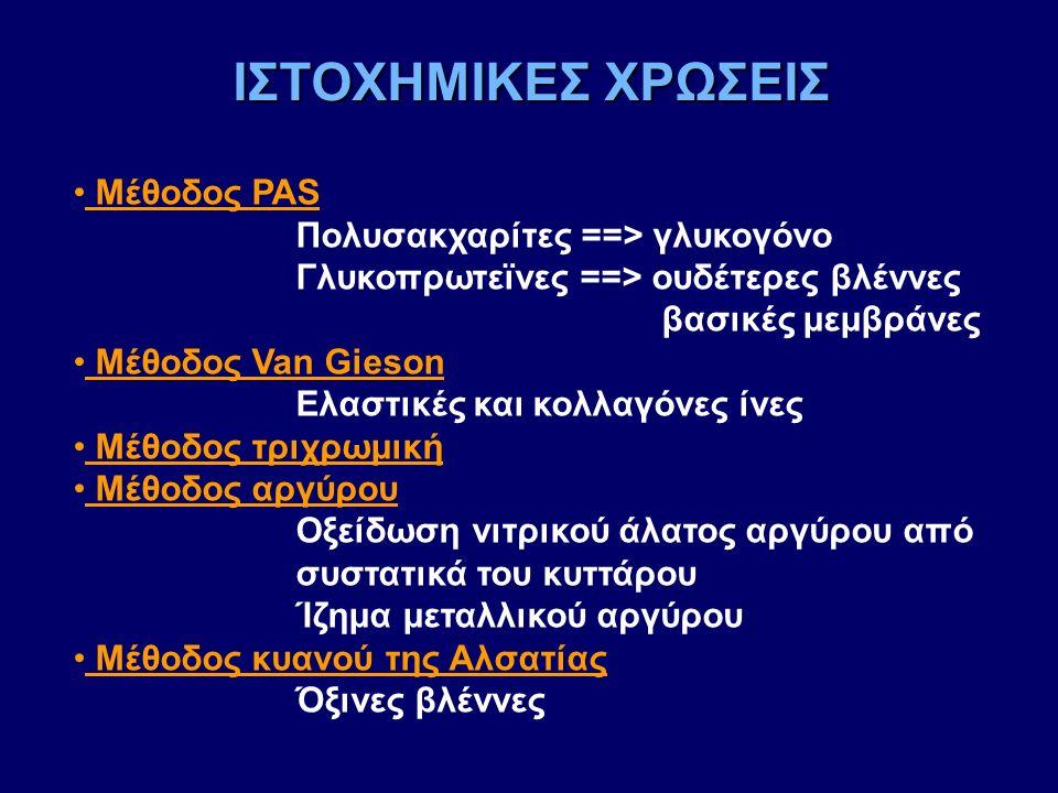 Μέθοδος PAS Πολυσακχαρίτες ==> γλυκογόνο Γλυκοπρωτεϊνες ==> ουδέτερες βλέννες βασικές μεμβράνες Μέθοδος Van Gieson Ελαστικές και κολλαγόνες ίνες Μέθοδ