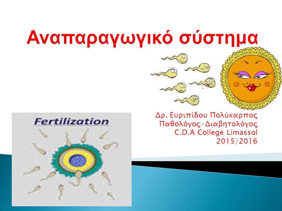 Δρ. Ευριπίδου Πολύκαρπος Παθολόγος-Διαβητολόγος C.D.A College Limassol 2015/2016