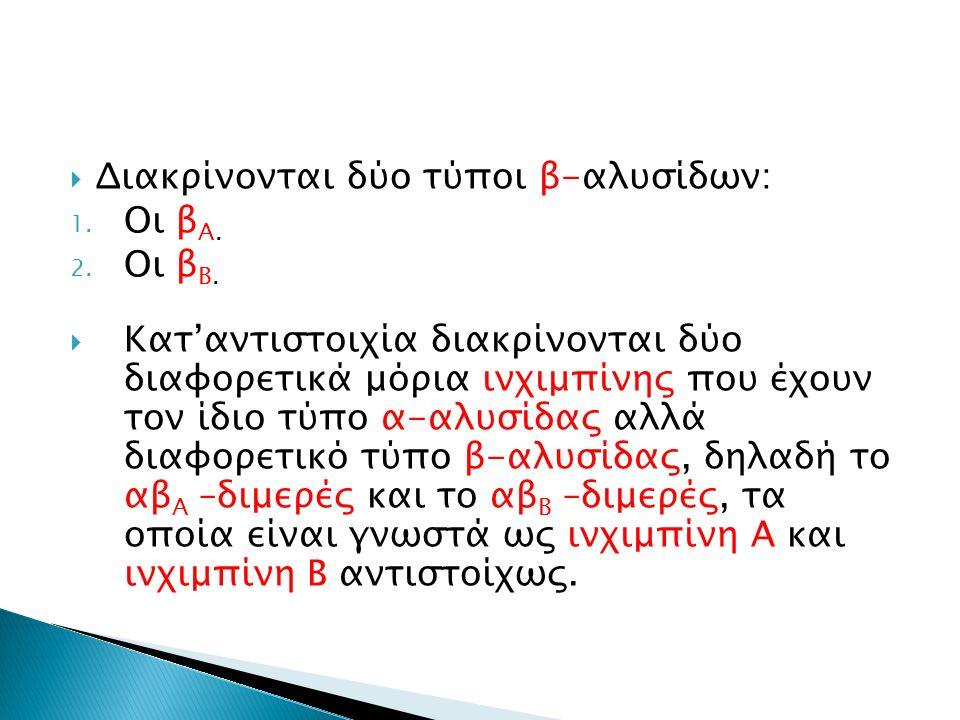 Διακρίνονται δύο τύποι β-αλυσίδων: 1. Οι β Α. 2. Οι β Β.  Κατ'αντιστοιχία διακρίνονται δύο διαφορετικά μόρια ινχιμπίνης που έχουν τον ίδιο τύπο α-α
