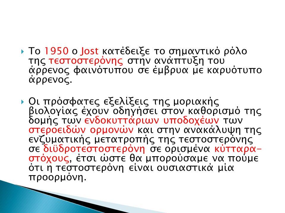  Το 1950 ο Jost κατέδειξε το σημαντικό ρόλο της τεστοστερόνης στην ανάπτυξη του άρρενος φαινότυπου σε έμβρυα με καρυότυπο άρρενος.  Οι πρόσφατες εξε
