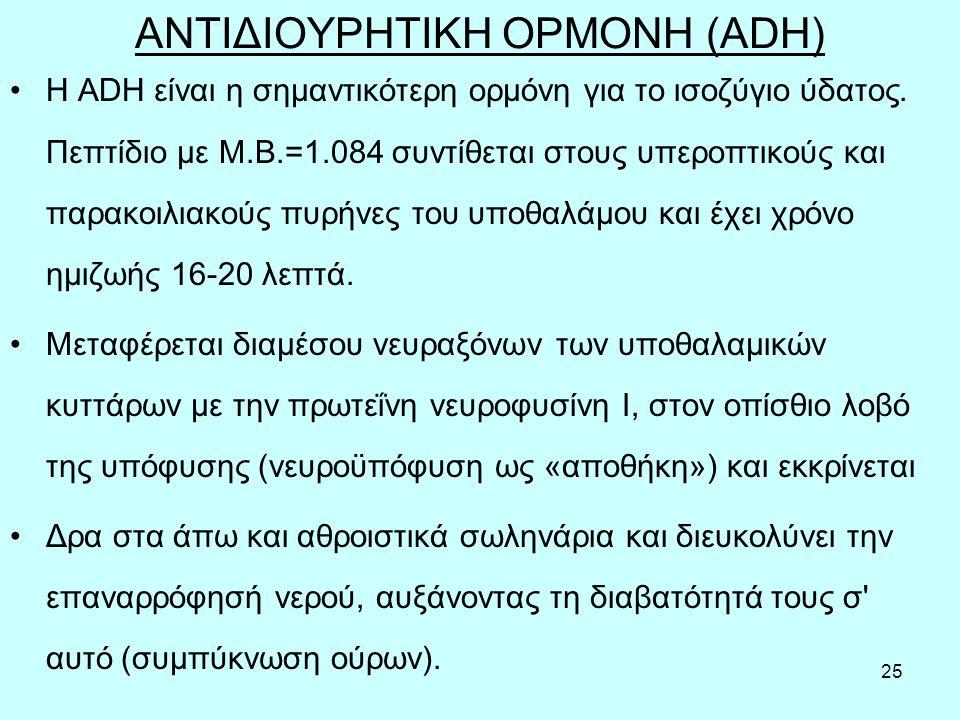 25 ΑΝΤΙΔΙΟΥΡΗΤΙΚΗ ΟΡΜΟΝΗ (ADH) Η ADH είναι η σημαντικότερη ορμόνη για το ισοζύγιο ύδατος.