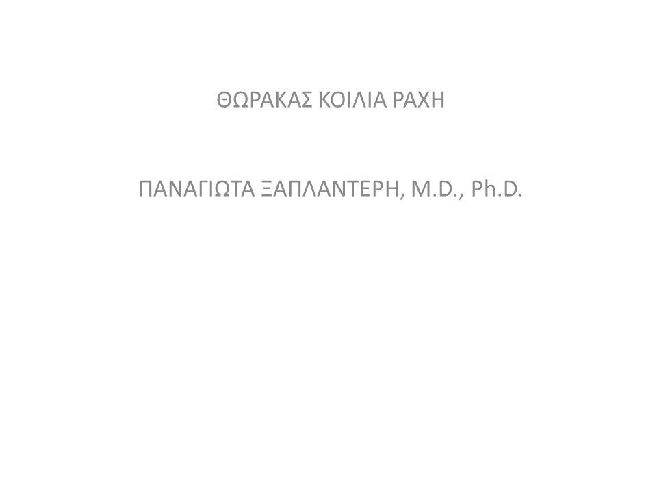 ΘΩΡΑΚΑΣ ΚΟΙΛΙΑ ΡΑΧΗ ΠΑΝΑΓΙΩΤΑ ΞΑΠΛΑΝΤΕΡΗ, M.D., Ph.D.