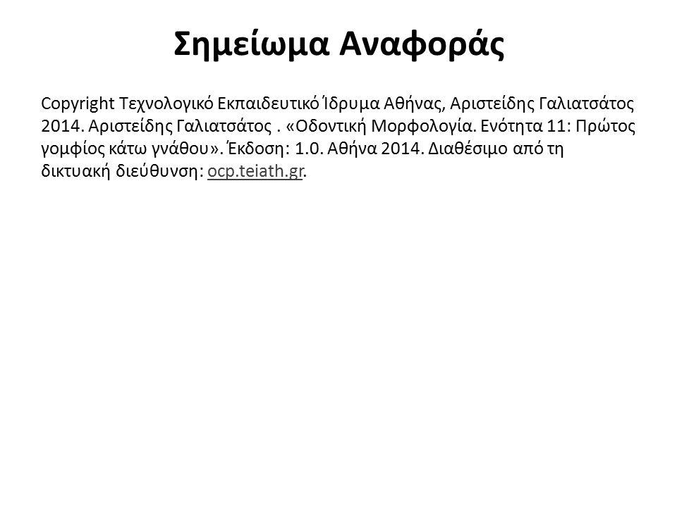 Σημείωμα Αναφοράς Copyright Τεχνολογικό Εκπαιδευτικό Ίδρυμα Αθήνας, Αριστείδης Γαλιατσάτος 2014. Αριστείδης Γαλιατσάτος. «Οδοντική Μορφολογία. Ενότητα