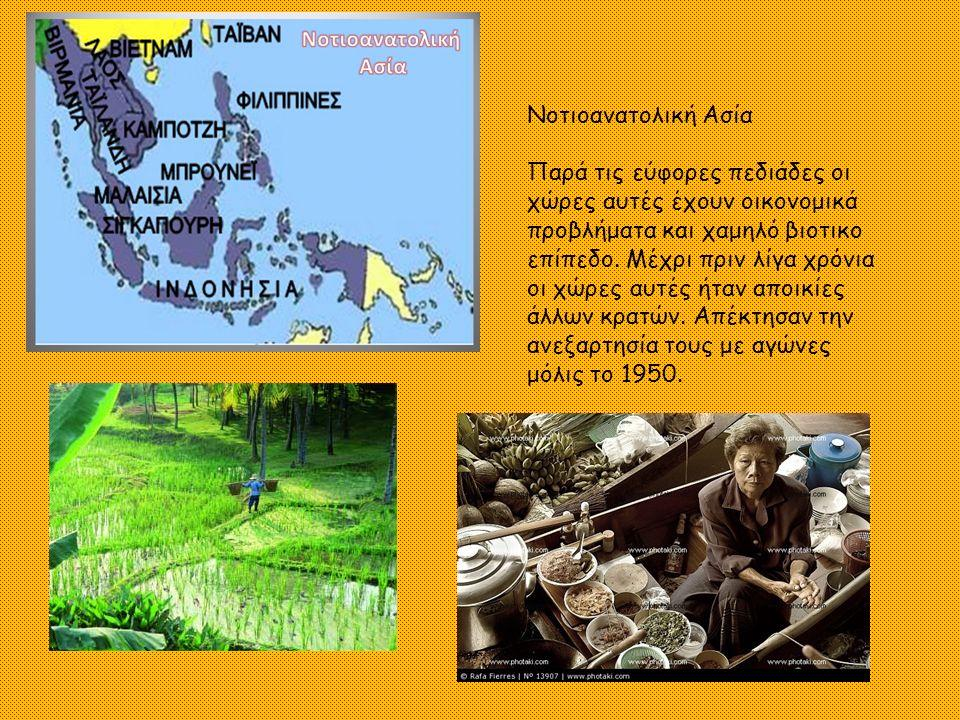 Νοτιοανατολική Ασία Παρά τις εύφορες πεδιάδες οι χώρες αυτές έχουν οικονομικά προβλήματα και χαμηλό βιοτικο επίπεδο.