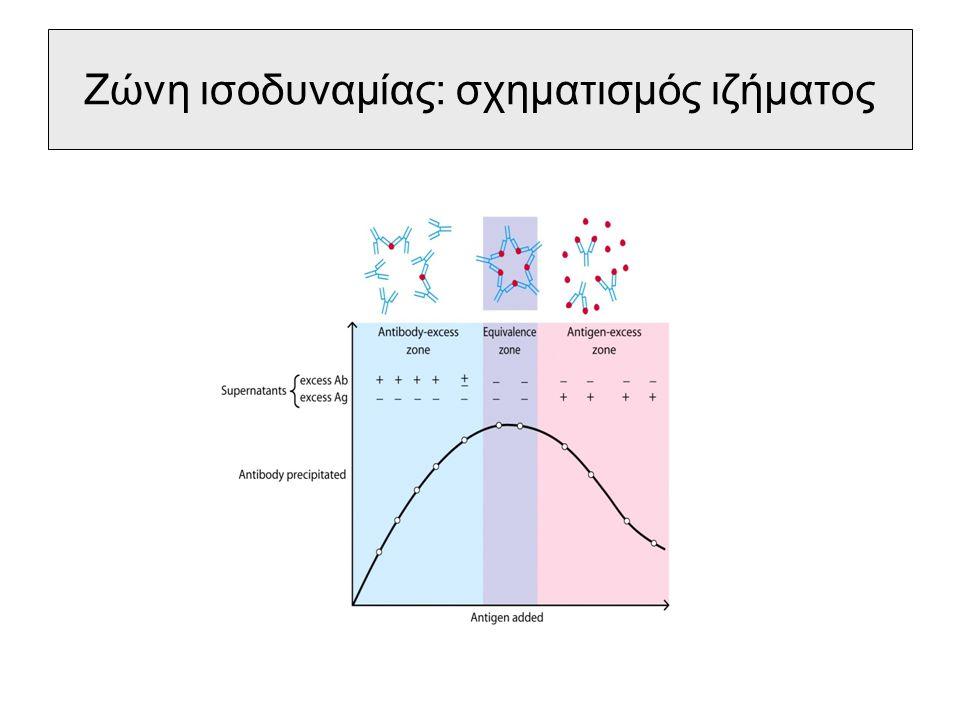 Τύποι αντιδράσεων κατακρήμνισης σε υγρό μέσο σε πήκτωμα – απλή ανοσοδιάχυση προς μια κατεύθυνση – διπλή ανοσοδιάχυση προς μια κατεύθυνση – διπλή ανοσοδιάχυση προς δύο κατευθύνσεις (Ouchterlony) – κυκλοτερής ή ακτινωτή ανοσοδιάχυση (Mancini) – ανοσοηλεκτροφόρηση – rocket ηλεκτροφόρηση – ανοσοκαθήλωση