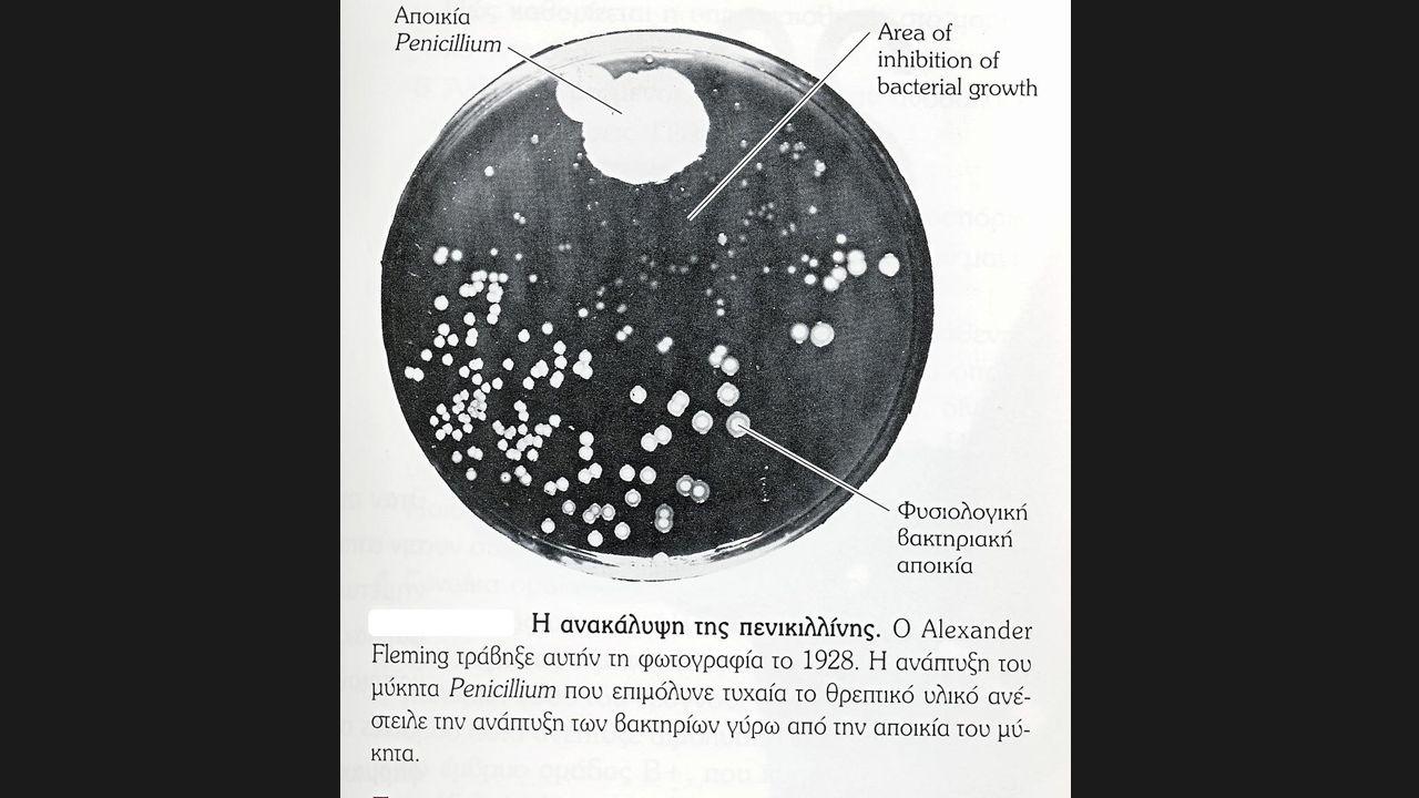 Ο κατάλληλος αντιμικροβιακός παράγοντας Δραστικός έναντι του μικροβίου.