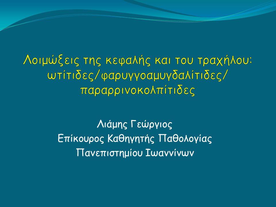 Λιάμης Γεώργιος Επίκουρος Καθηγητής Παθολογίας Πανεπιστημίου Ιωαννίνων