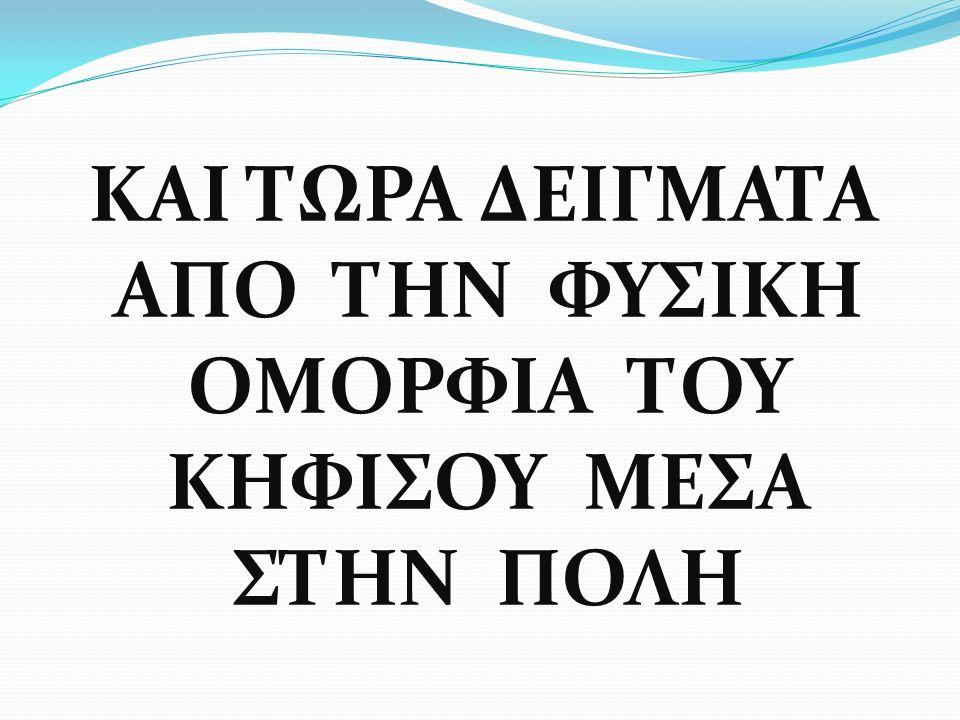 ΔΑΣΙΚΟ ΜΟΝΟΠΑΤΙ ΣΤΙΣ ΠΗΓΕΣ ΤΗΣ ΠΑΡΝΗΘΑΣ
