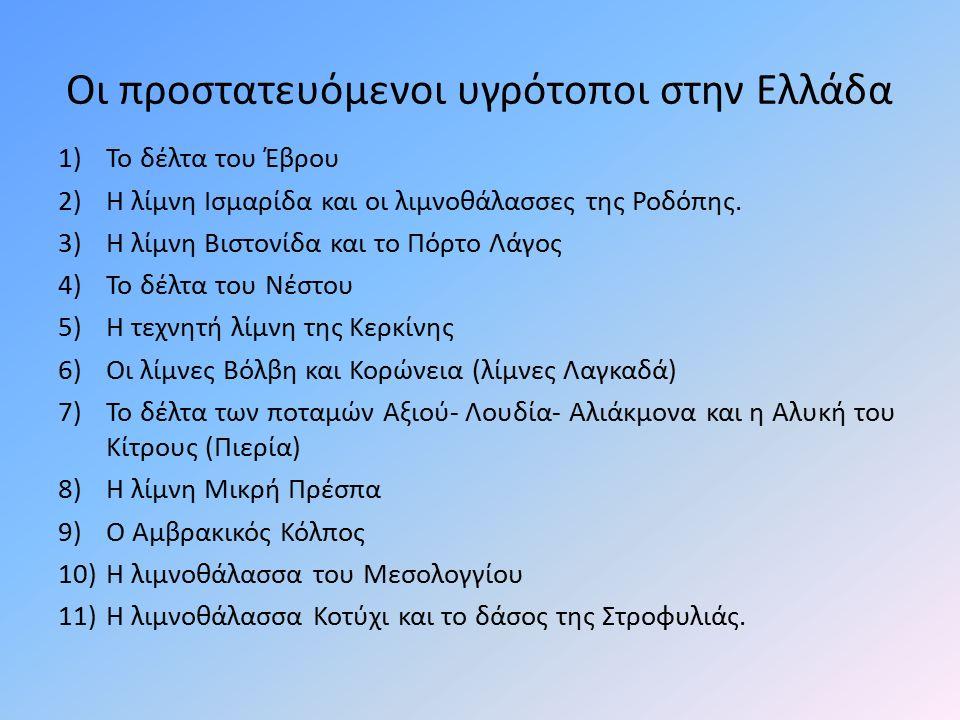 Οι προστατευόμενοι υγρότοποι στην Ελλάδα 1)Το δέλτα του Έβρου 2)Η λίμνη Ισμαρίδα και οι λιμνοθάλασσες της Ροδόπης. 3)Η λίμνη Βιστονίδα και το Πόρτο Λά